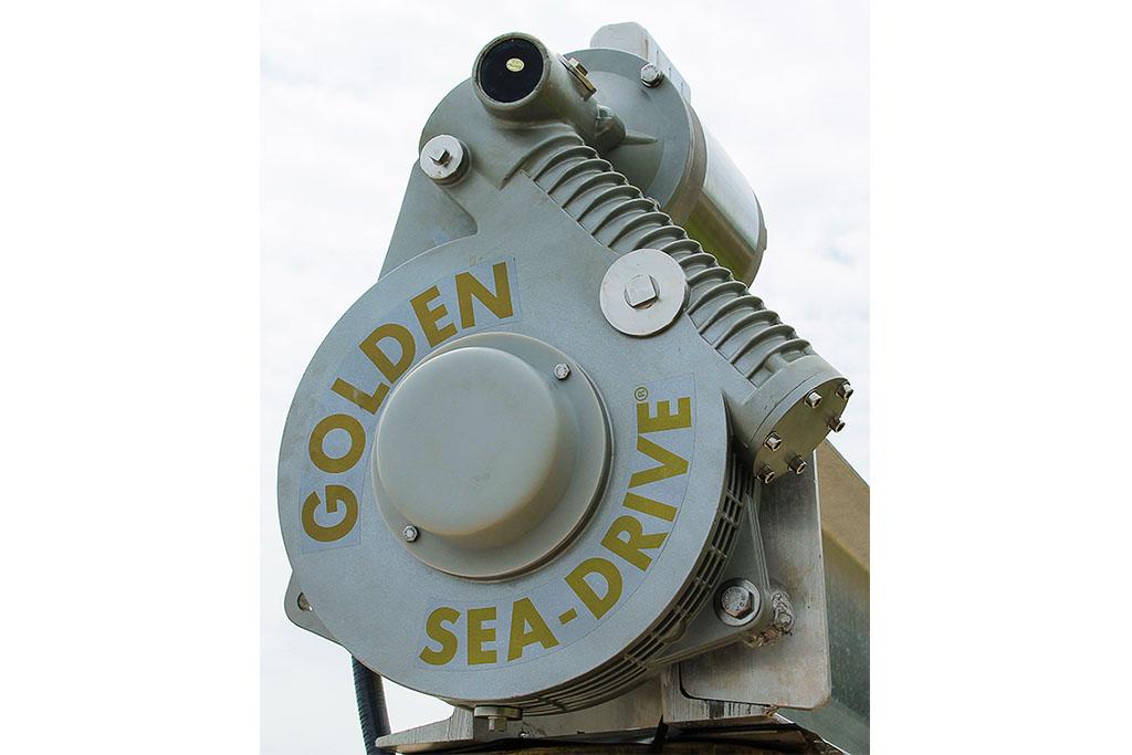 Golden Sea-Drive